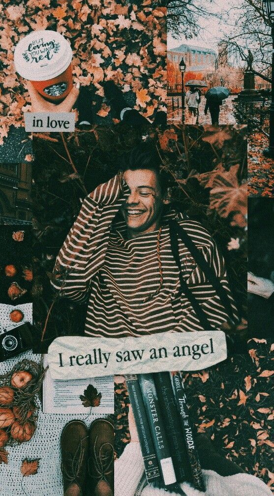 Aesthetic Harry Styles Wallpaper Ideas